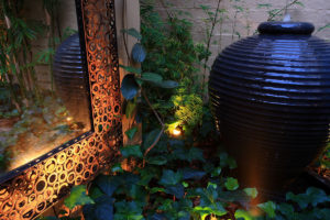 Backyard landscape design water feature with mirror