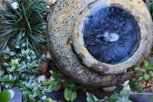 Close up of water feature in garden bed