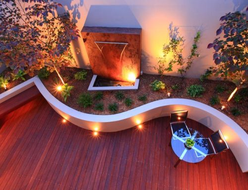 Modern Curved Courtyard
