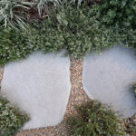 Courtyard landscape design stepping stones