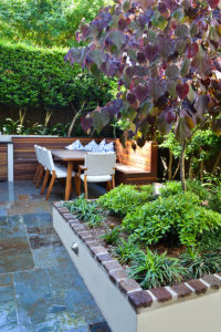 Courtyard landscape design trees and beds