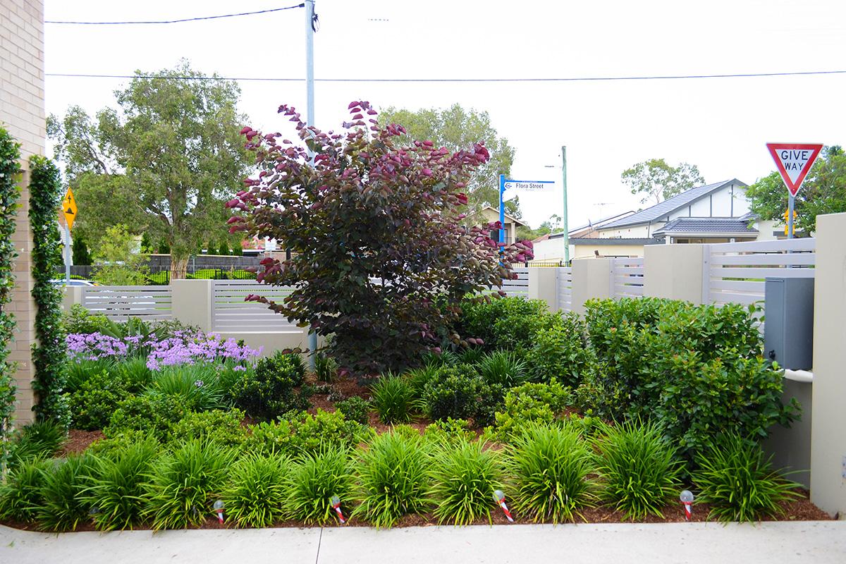 Family garden landscape design front path