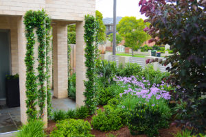 Family garden landscape design plantings