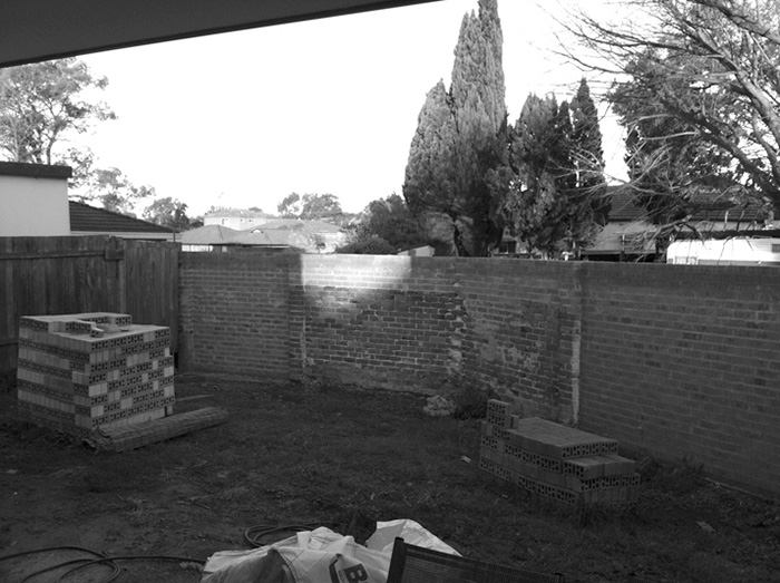 Family Garden before makeover
