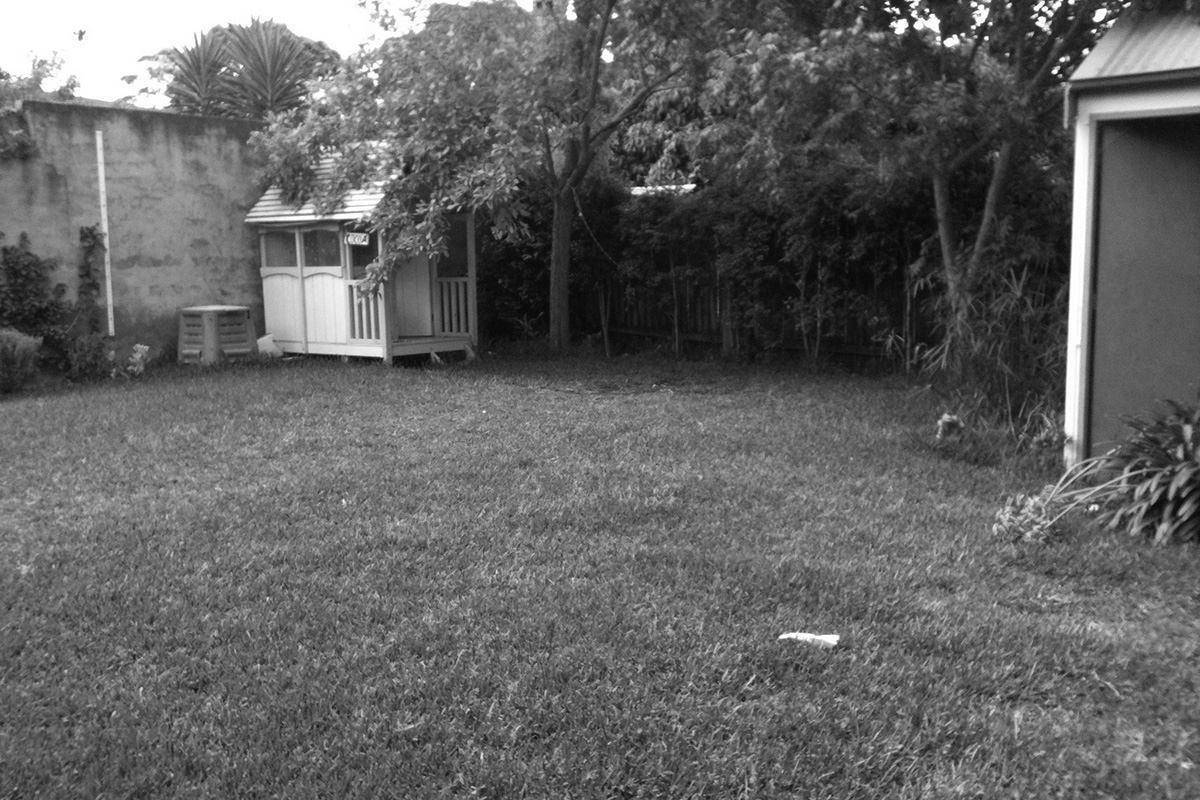 Before backyard renovation