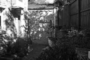 Before image of tired side courtyard