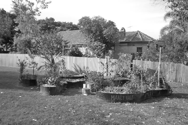 Community garden before re design
