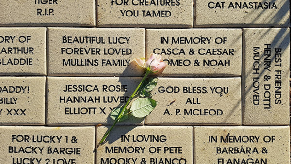 Memorial Wall at RSPCA front entrance