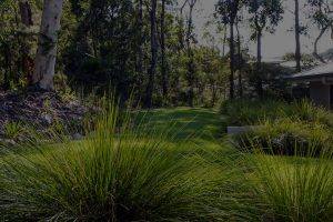 Image of gardens and grass land
