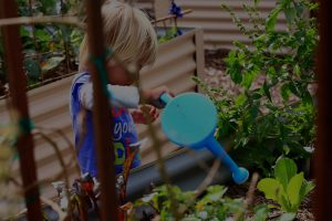 Image of child watering plants