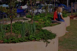 Raised garden beds with children sitting on the edge