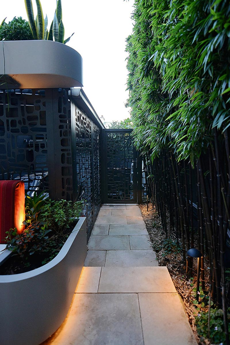 The fence and path into the space, bounded by bamboo screening on one side and the internal courtyard on the other.