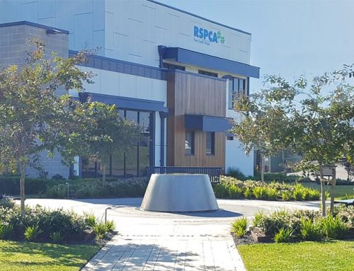 RSPCA Head Office Entrance