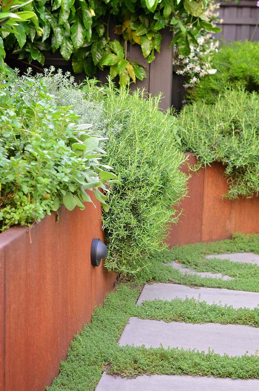 Raised corten planter with lush foliage