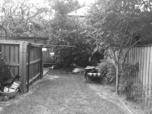 Before shot looking towards the back of garden