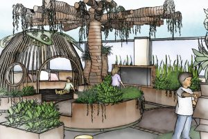 Close up conceptual sketch perspective of timber tree umbrella and raised planters with seasonal seasonal herbs and scented shrubs