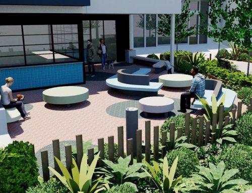 RSPCA Cafe Landscape – In Progress