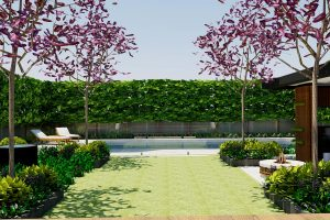 View across garden lawn to pool framed by statement feature trees