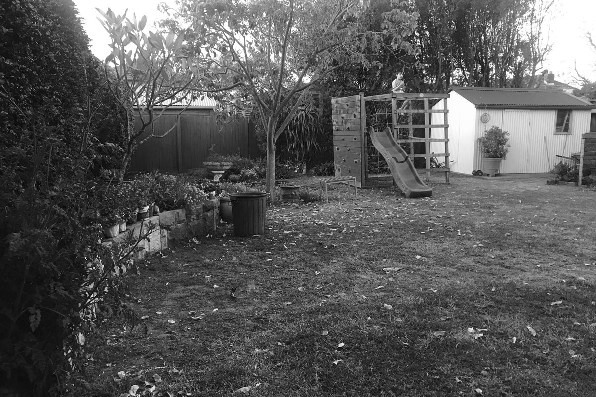 Before Image of the Rear Garden